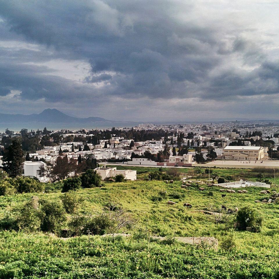 Vue sur la baie de Tunis depuis les hauteurs des ruines de Carthage